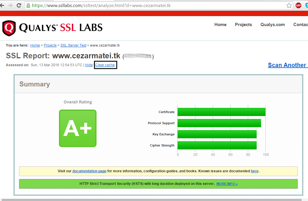 Verify-HTTPS-SSL-Certificate-on-Domain